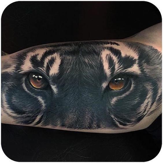 tiger13