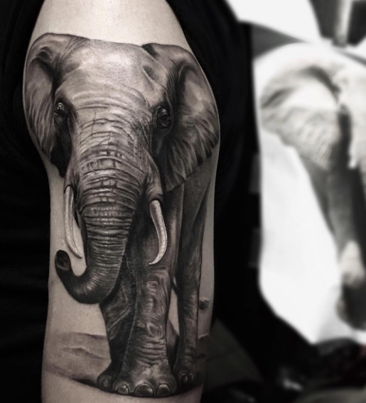 amazing and cute elephant tattoos onpoint tattoos. Black Bedroom Furniture Sets. Home Design Ideas