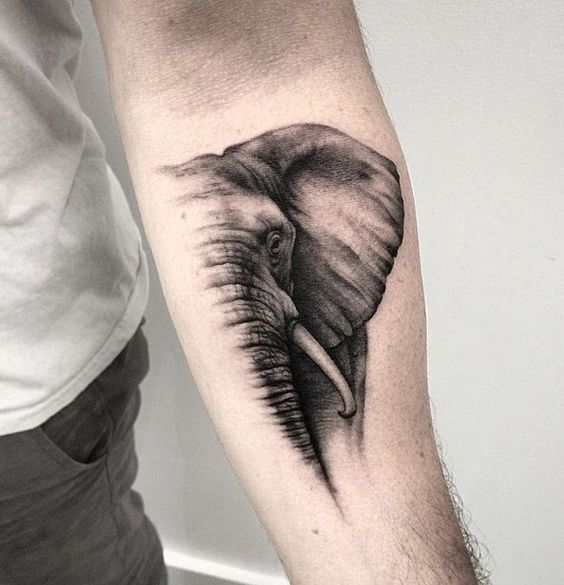 Mature elephant forearm tattoo